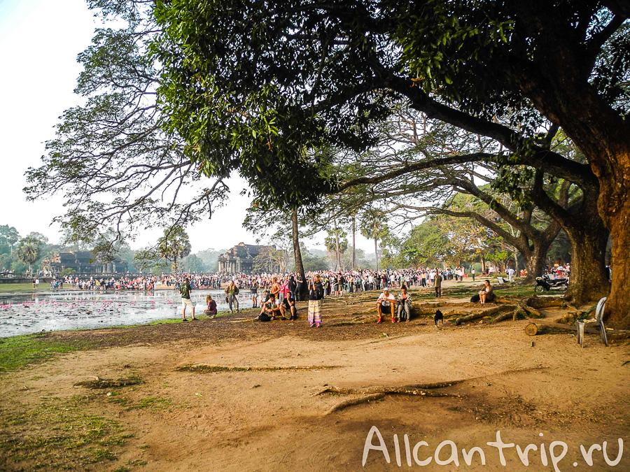 Все любуются рассветом над Ангкор Ват