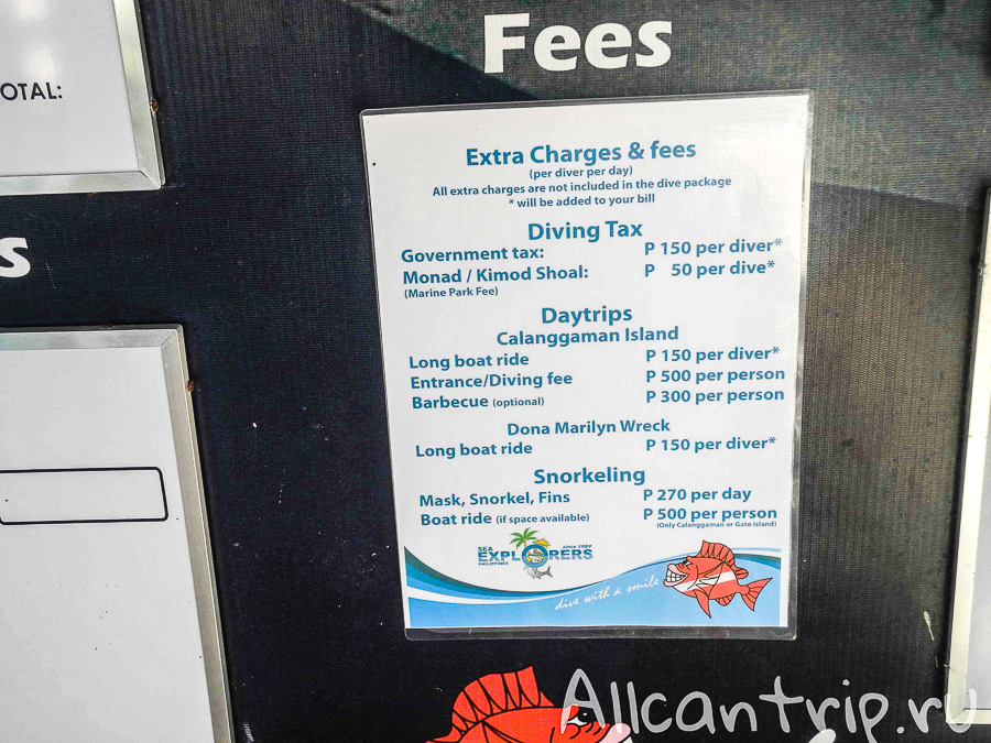Цены на дайвинг на острове Малапаскуа