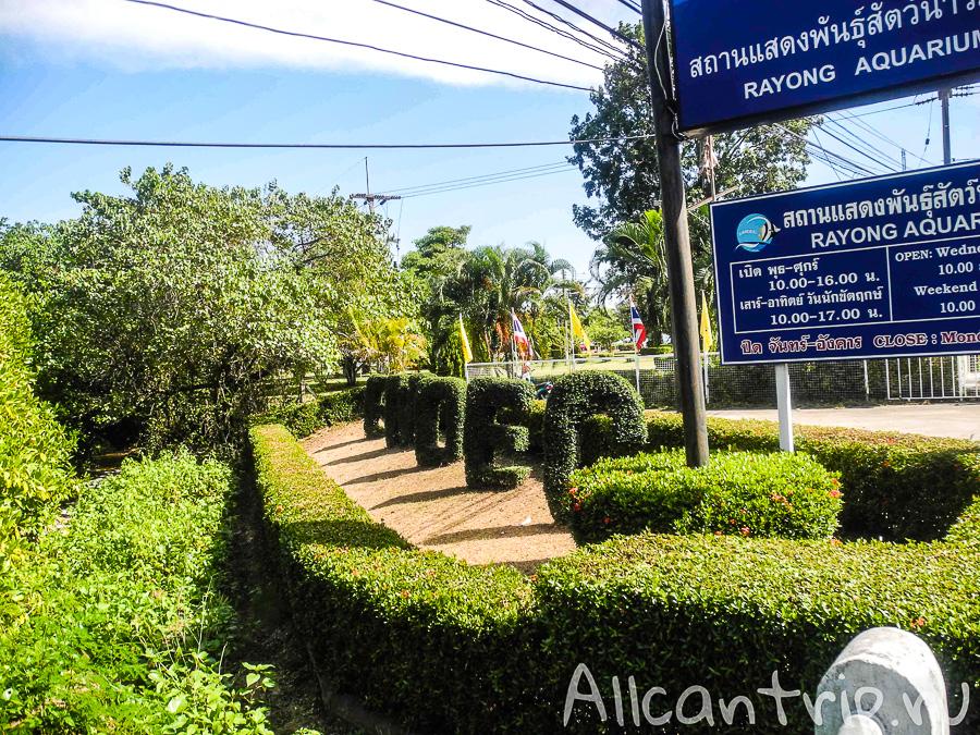 Аквариум в Бан Пхе