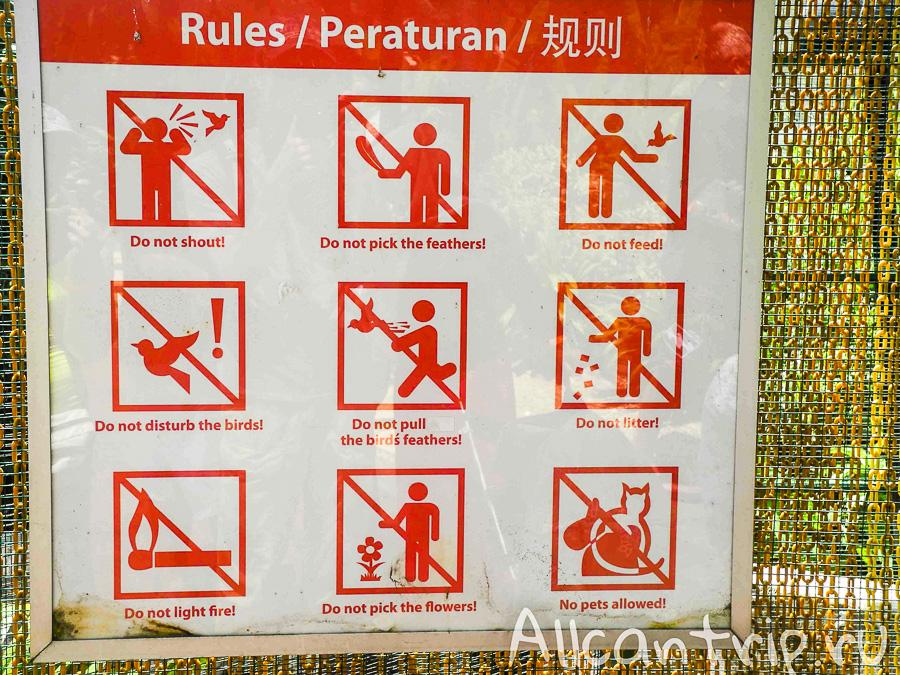 Правила поведения в парке птиц в Куала-лумпур