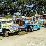 Тагбиларан (Филиппины). Полезная информация.