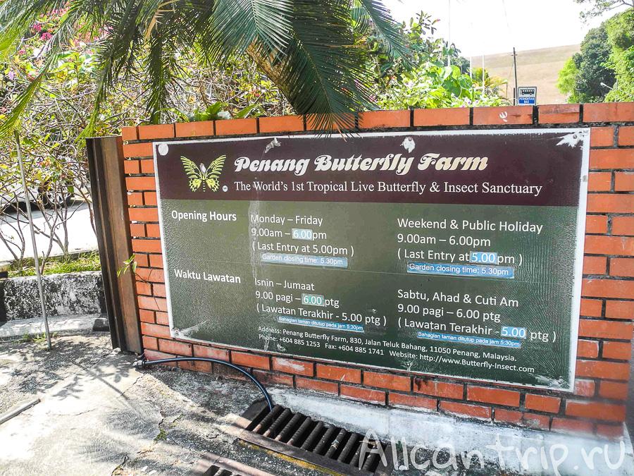 Ферма тропических бабочек на Пенанге