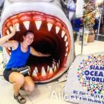 В пасти акулы! Океанариум Siam Ocean World в Бангкоке