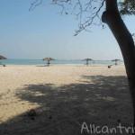 Погода в Тайланде в январе: в какой части страны отдохнуть?