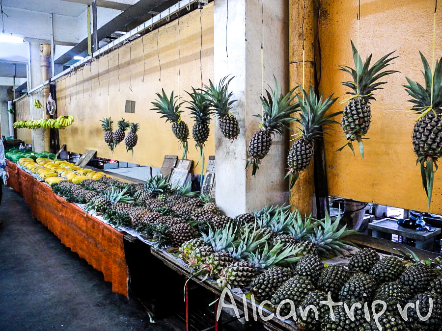 ананасы в Малайзии