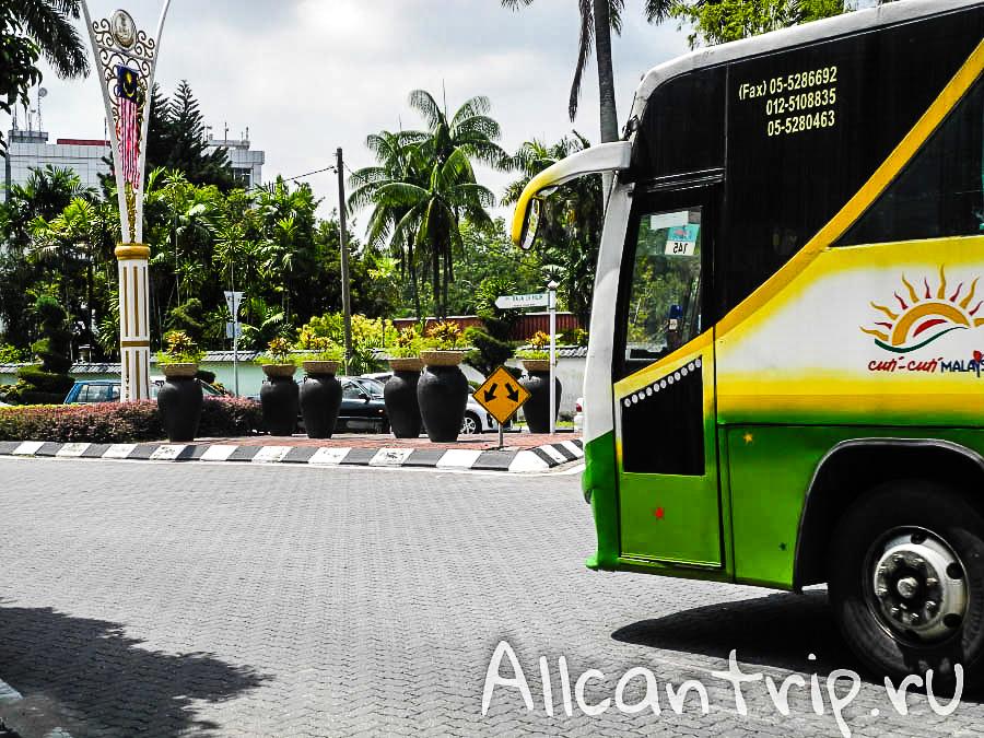 пальмы в городе Ипох Малайзия