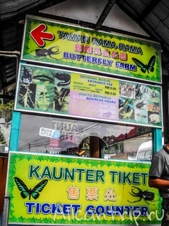 Butterfly farm в Тана Рате