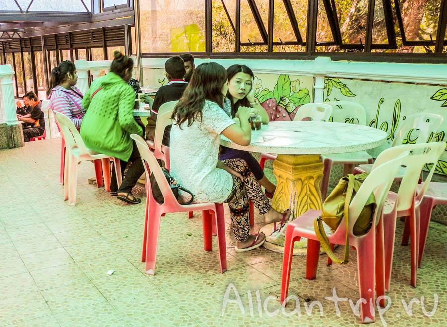 Клубничное кафе в горах Малайзии