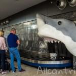 Аэропорт Анталии – вся полезная информация в одном месте