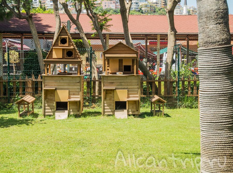 домики для уличных кошек в Алании