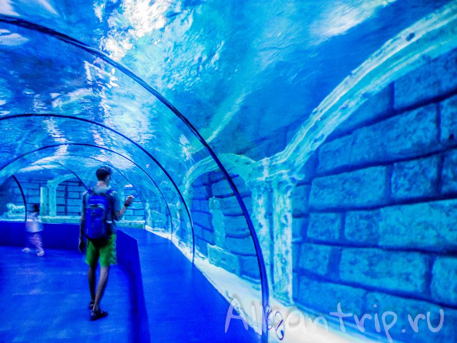 туннель в океанариуме Анталии