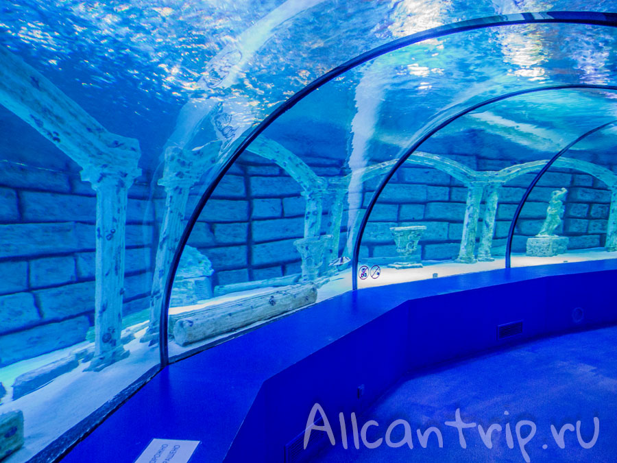 на территории аквариума Анталии
