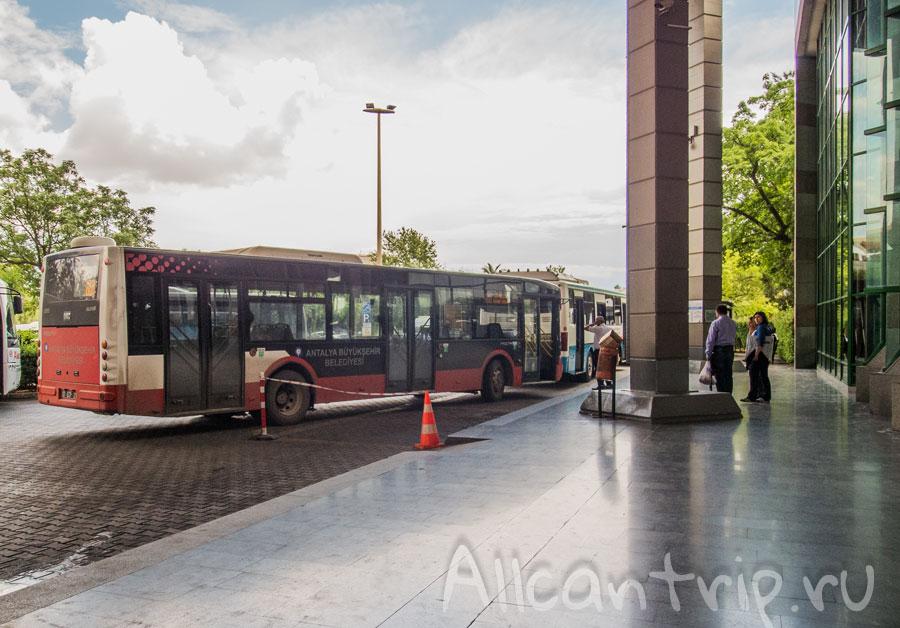 остановка автобусов на автовокзале Анталии