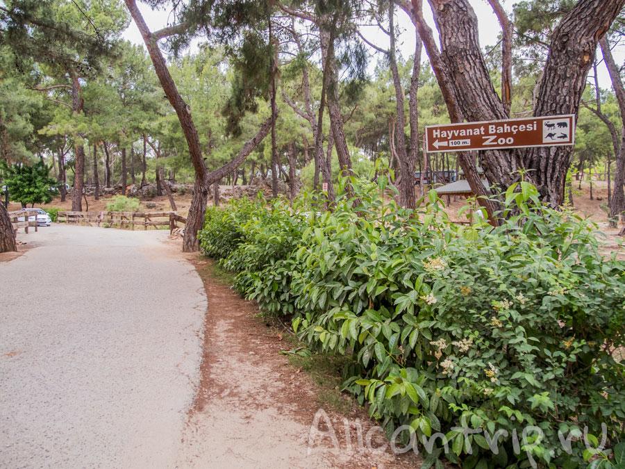 на территории зоопарка Анталии