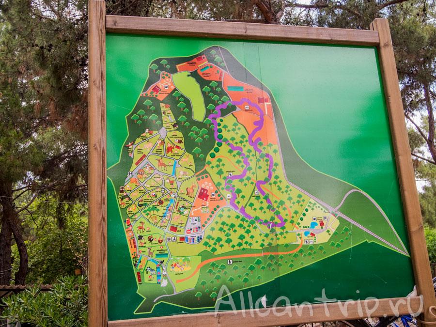 карта схема зоопарка Анталии