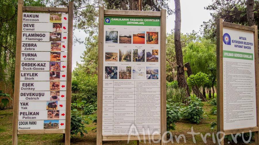 таблички указатели в зоопарке Анталии