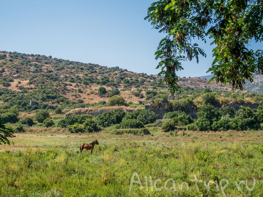 как добраться до Эфеса