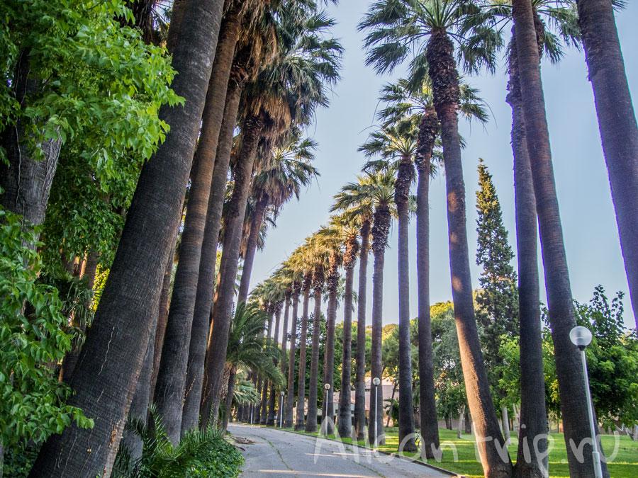 парк в Измире фото