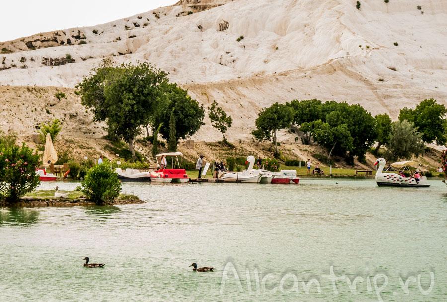 озеро с утками в памуккале