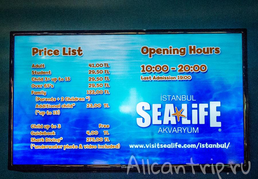билеты в аквариум в стамбуле