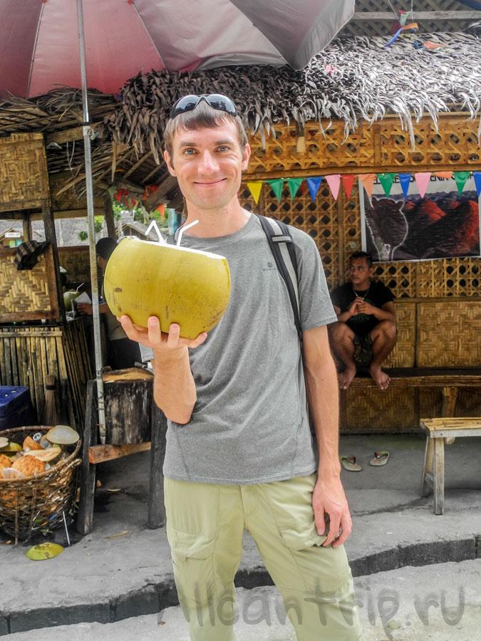 молодой кокос