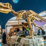 Торговый центр Форум Истанбул или где прячутся настоящие динозавры в Стамбуле