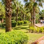 Парк Ататюрка в центре Алании – много зелени, цветов и фонтанов