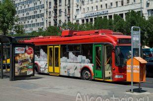 общественный транспорт в Белграде