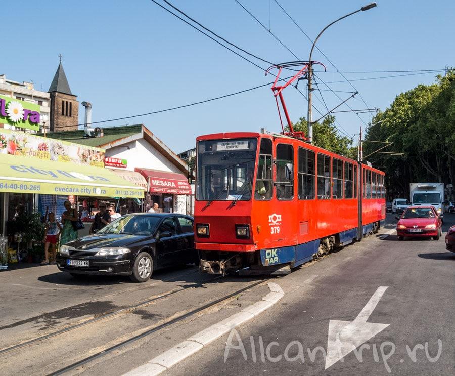 трамваи в белграде