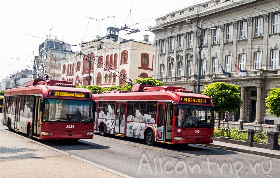 расписания автобусов белград