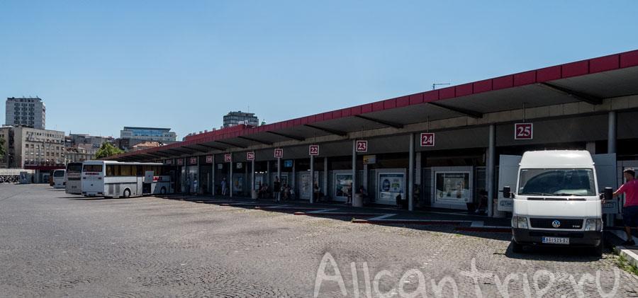 автовокзал белград платформы