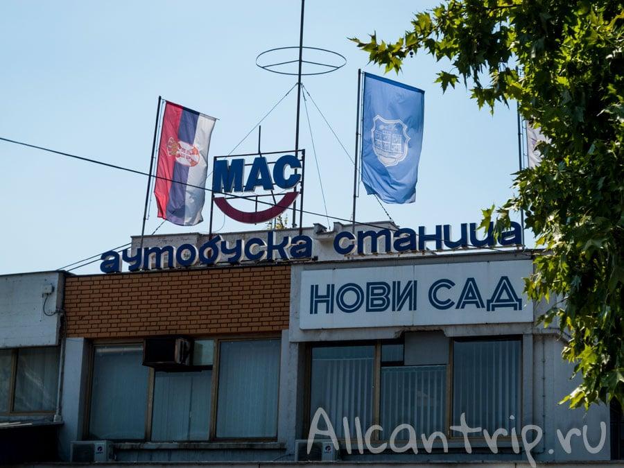 автовокзал Нови Сад фото