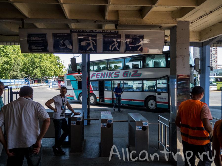 автовокзал Нови Сад платформа