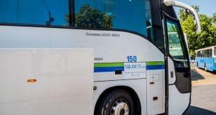 автобус в нови саде