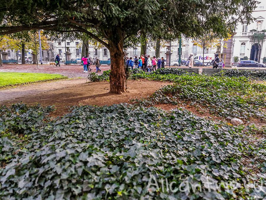 парк в Милане