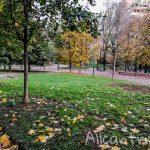 Городской сад Индро Монтанелли в Милане – таинственный лес недалеко от музея