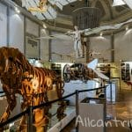 Музей Леонардо да Винчи в Милане – необычный музей изобретений в 3d