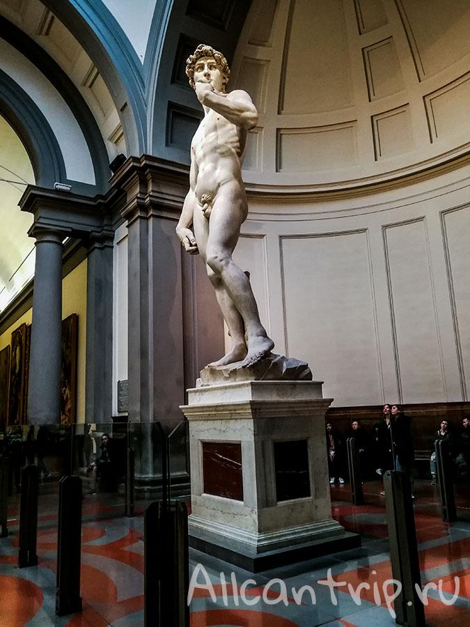 давид микеланджело оригинал