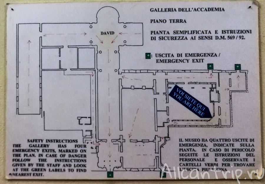 галерея академии флоренция