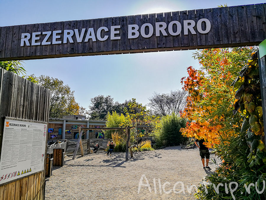 пражский зоопарк фото
