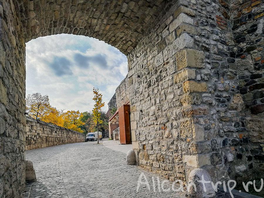 будайская крепость дворец