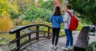 остров маргит будапешт японский сад