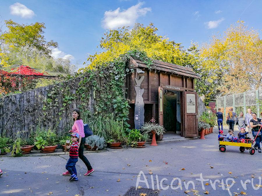 зоопарк в будапеште отзывы