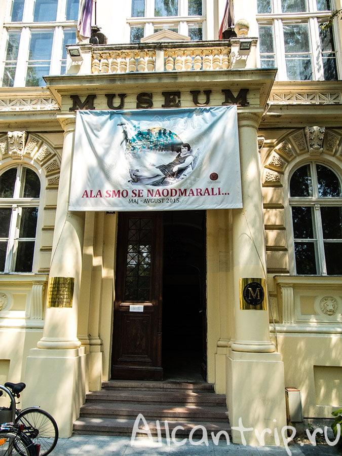 музей воеводине сербия