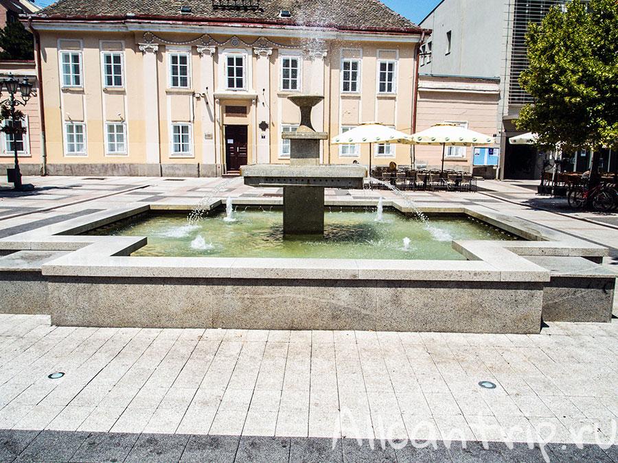 площадь свободы в нови саде фонтан